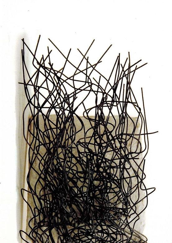 Dimension of Line_Rosemarie Castoro (front) .jpg