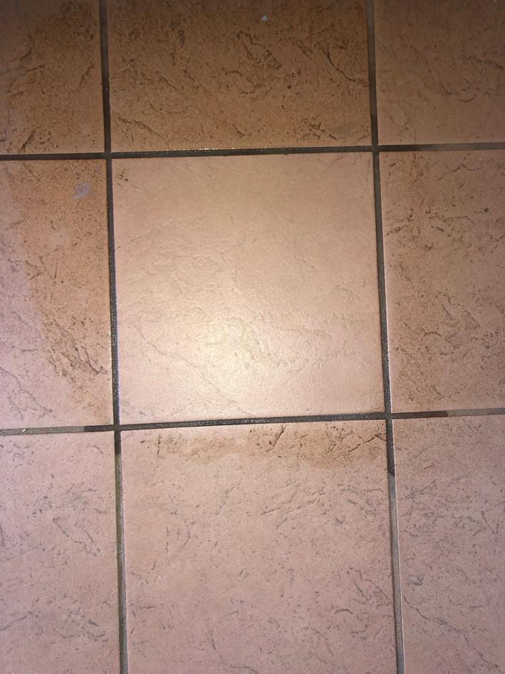 Tiles w/Scotch Brite Scouring Pad