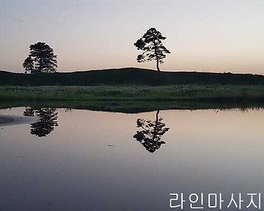 청주출장마사지 | 라인마사지 | 한국
