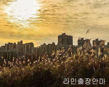김포출장마사지 | 라인마사지 | 한국