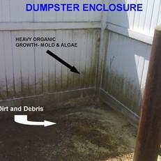 Dumpster Enclosure Cleanout