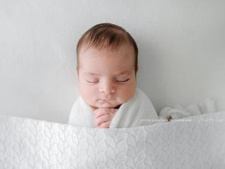Jacob - Studio Newborn Session | Brisbane Newborn Photographer