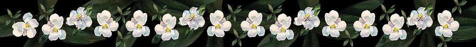 wa-STRIP-florals-page-01.jpg