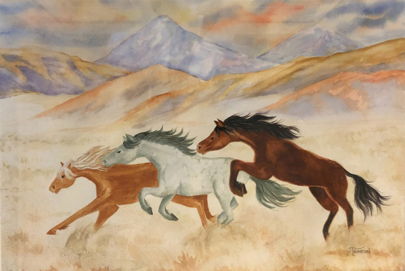 Mustangs of the Mojave