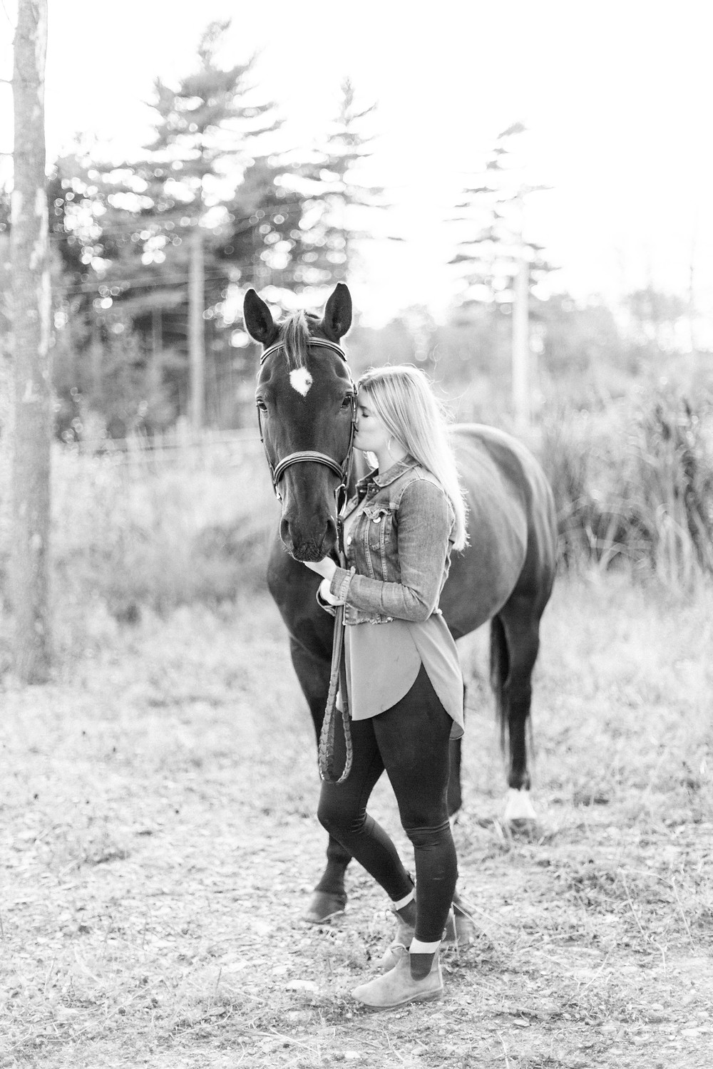 Equestrian photography inspiration by Marie Roy Photography