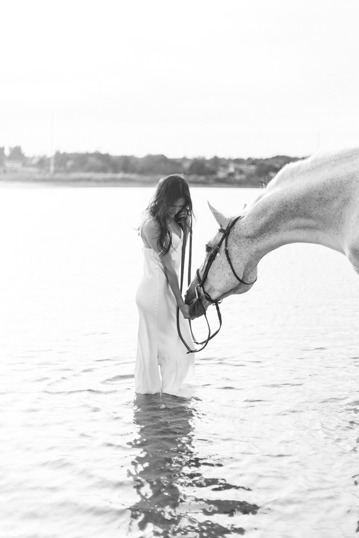Marie-Roy-Photography-Equestrian-4093-2.