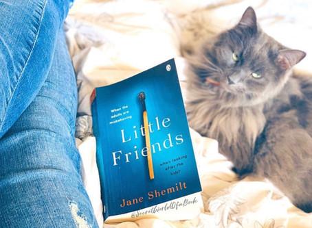 Little Friends by Jane Shemilt ★★★★★