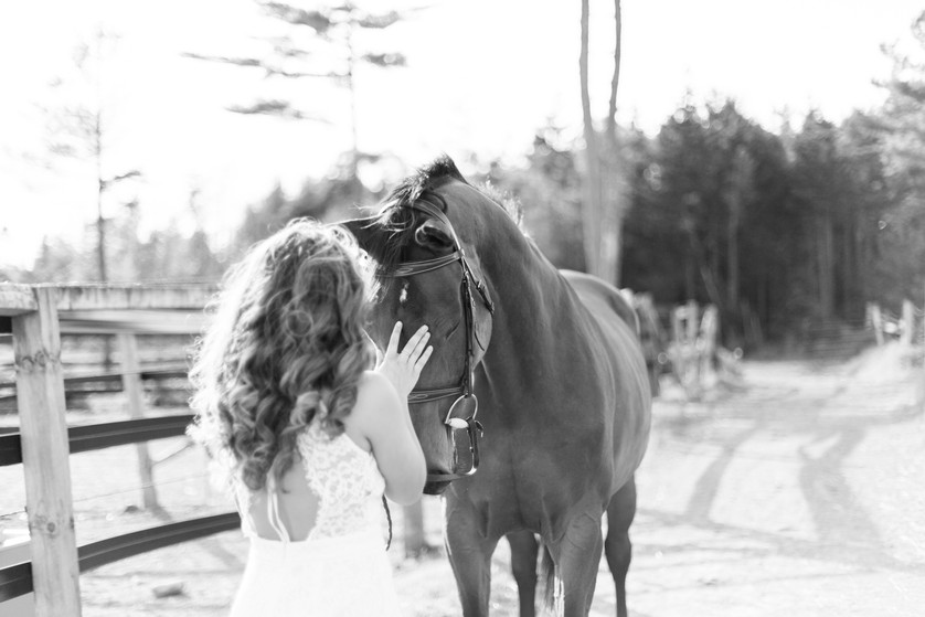 MarieRoy-MiniSessions-Equestrian-9075-2.