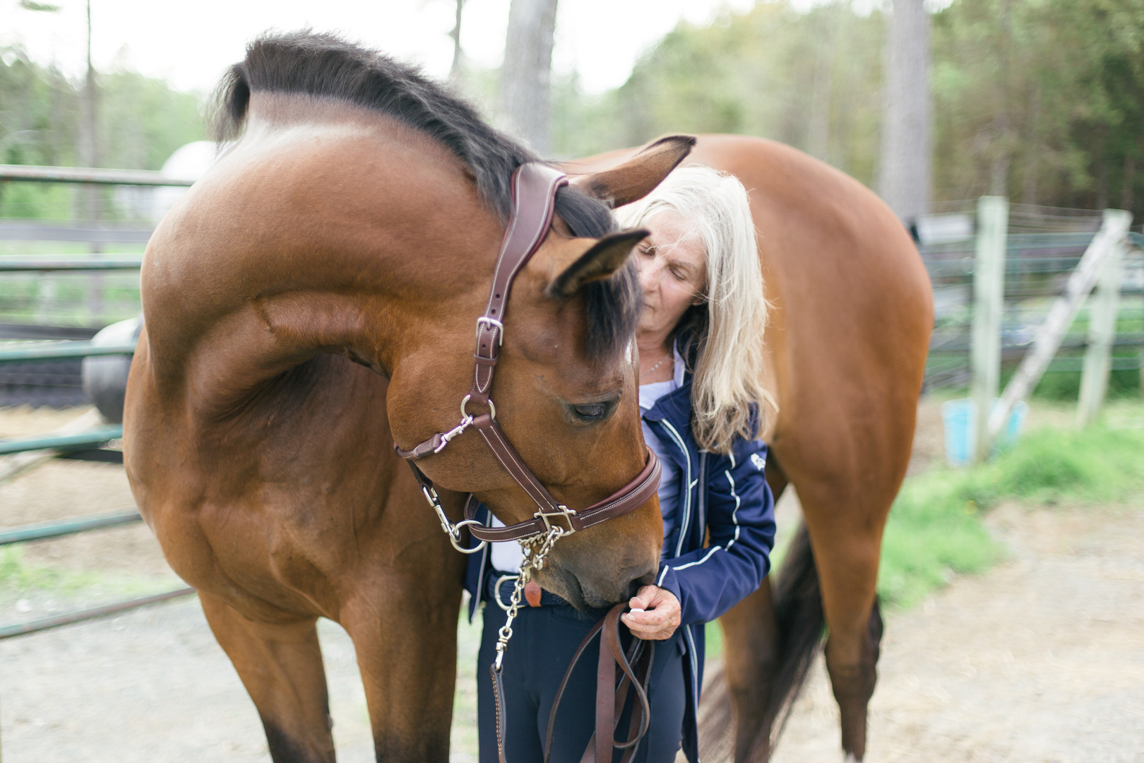MarieRoy-MiniSessions-Equestrian-8201.JP