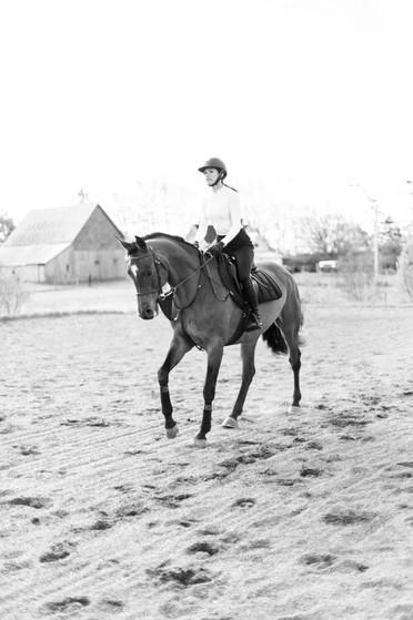 Marie-Roy-Photography-XXX-Equestrian-426
