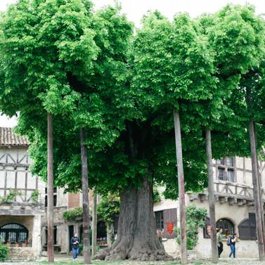 MarieRoy-Lyon-France-2277.jpg