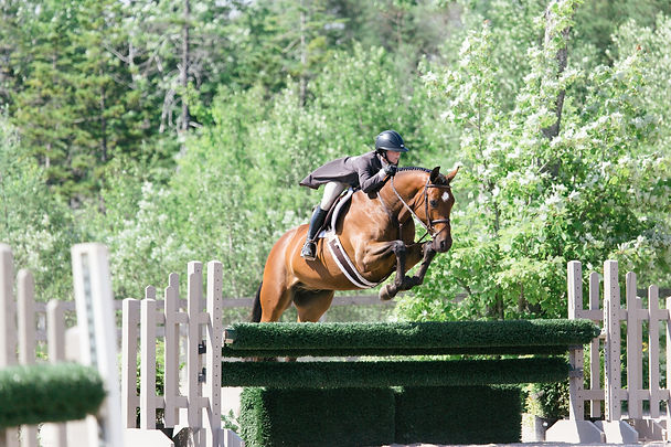 MarieRoy-RestlessPines-Horseshow-6458.JP