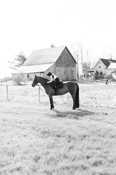 Marie-Roy-Photography-XXX-Equestrian-427