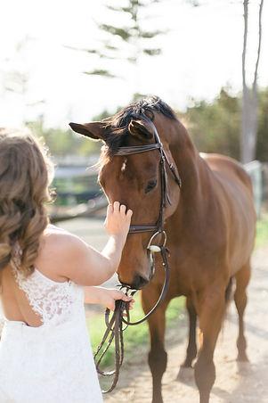 MarieRoy-MiniSessions-Equestrian-9064.JP