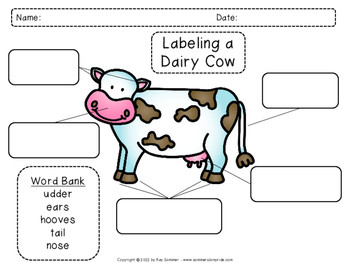 Labeling a cow