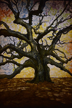 Angel Oak Lightbox