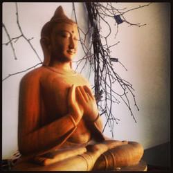 Begin a Meditation Practice: Wrkshp
