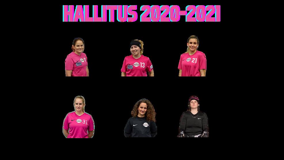 Hallitus_2020.png