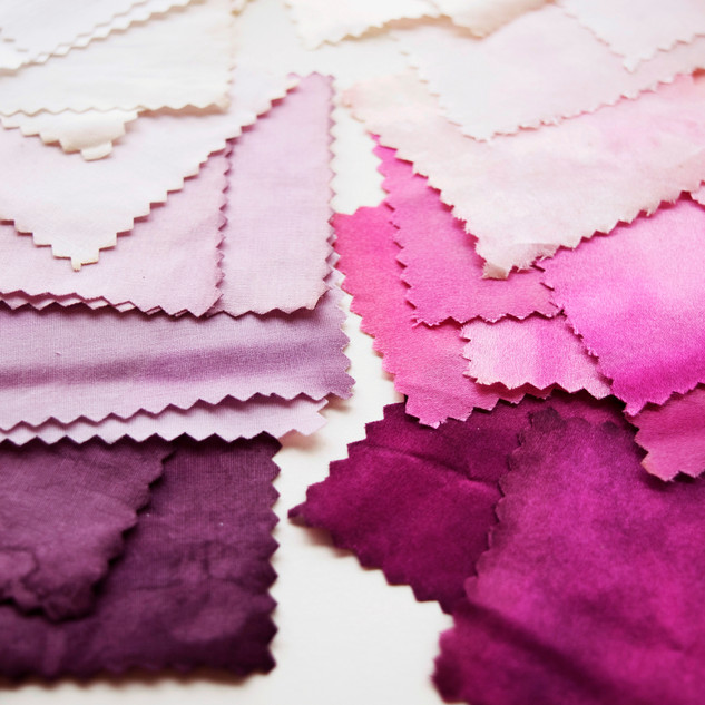 Bacteria dye colour swatches