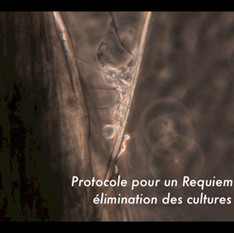 Requiem Aseptisé (French subtitled version)