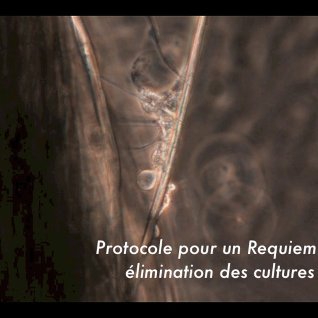 Requiem Aseptisé (French subtitled version)