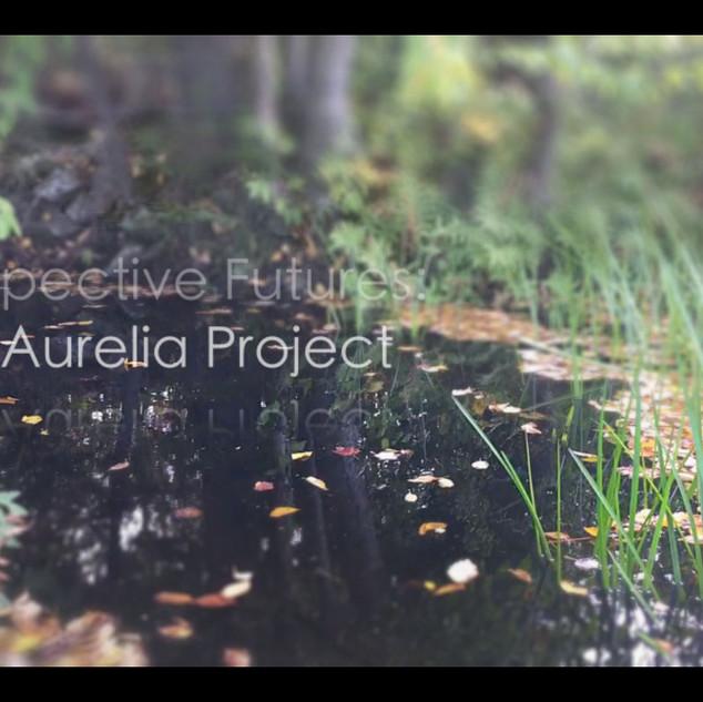 Prospective Futures, video still, title shot