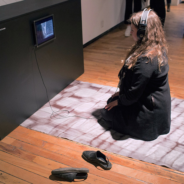 Metamaterial + Aseptic Requiem installation, InterAccess Gallery