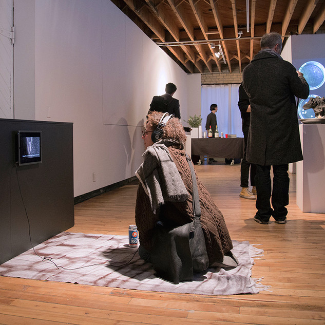 Metamaterial + Aseptic Requiem, InterAccess Gallery