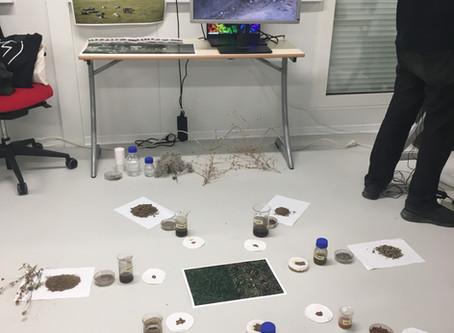 Lab 5: Culmination
