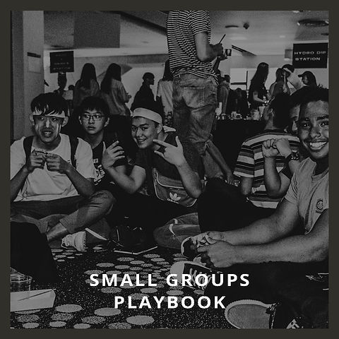 Small Groups Playbook