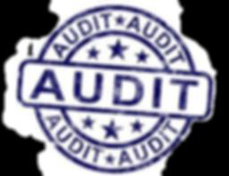 audit edit.png