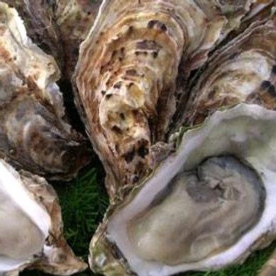 殻付き牡蠣(真かきくん)/大1箱10個入り