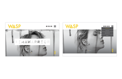 WASP Website Home