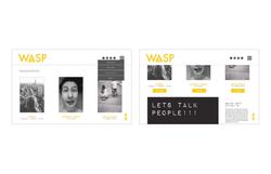 WASP Website Blog