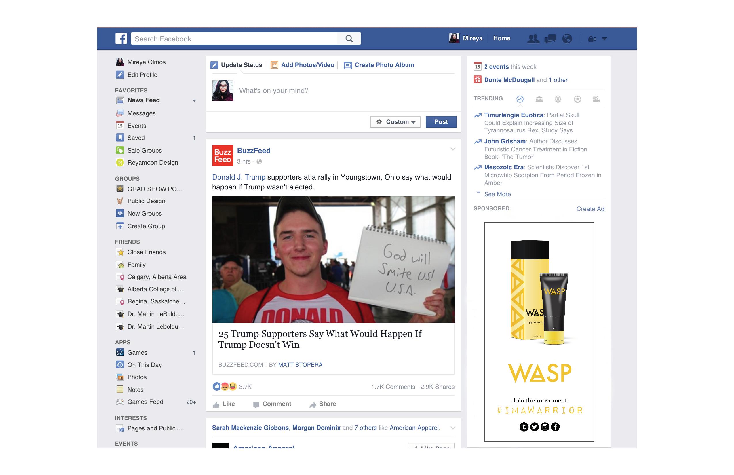 WASP Facebook Ad