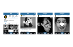 WASP Instagram Account