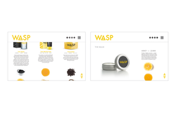 WASP Website Product 2