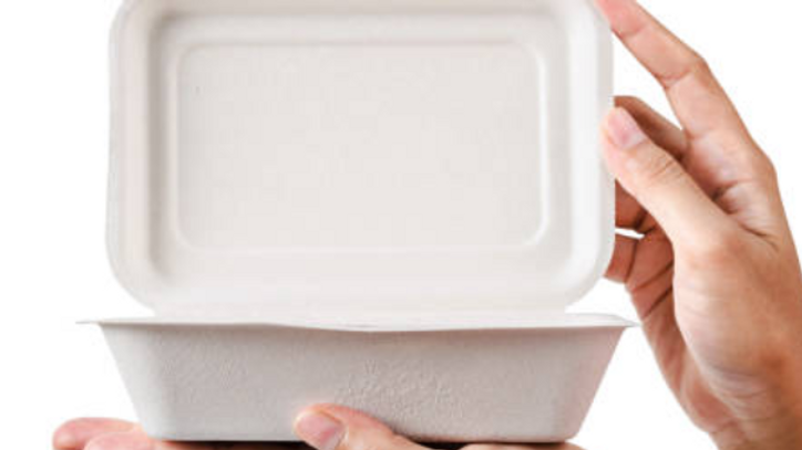 Biodegradable Food Containers (Customisable )