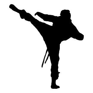 ninja-silhouette-021.jpg