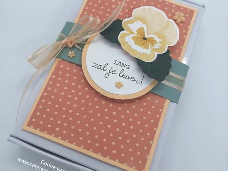Mini Paper Pumpkin-doosje met inhoud