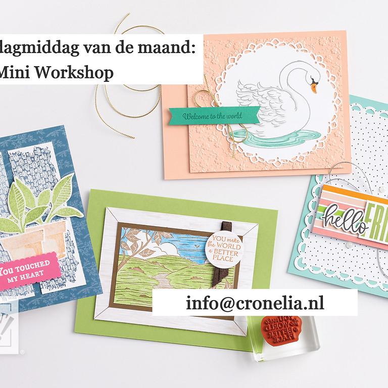 Vrijdagmiddag Mini Workshop
