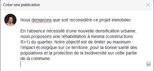 correction professionnelle posts Facebook