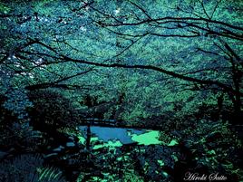 Japanischer Künstler  schafft prächtige Landschaften mit der Kunst Kiri-e / Kirigami