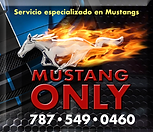 Mustang Only Anuncio FULL SPEED.png