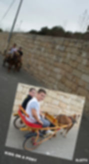 Kids on a Pony