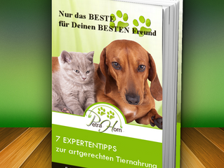 ebook Download gratis
