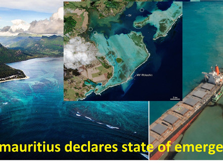 #Mauritius declares state of emergency after spilling tons of fuel.