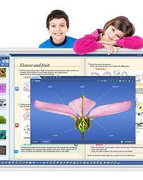 Cosmoted-Solucoes-MozaBook_crop.jpg