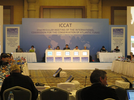 ICCAT Meeting