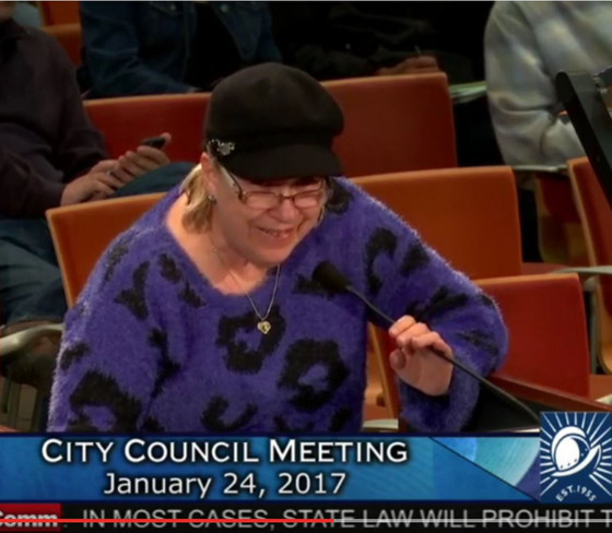 Another Resident to the Cupertino City Council, WHAT ARE YOU WAITING FOR?
